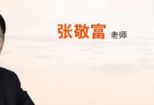 2017注会北注协张敬富审计基础进阶班(全)